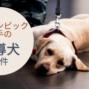 パラリンピック選手の盲導犬が理由でホテル予約が拒否された件で