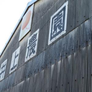 Gifu / Inoue Farm