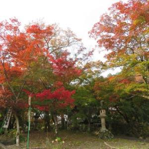Gifu / Hokke-ji Temple