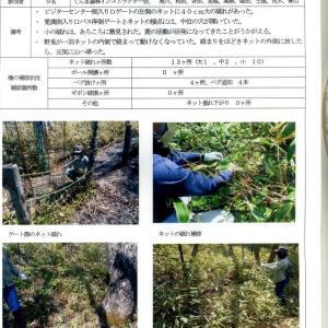 覚満淵の防鹿柵点検報告書  NO.4