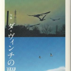 鷲巣正徳句集『ダ・ヴィンチの翼』