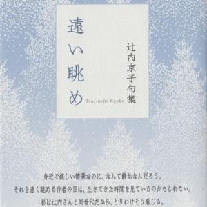 辻内京子句集『遠い眺め』ふらんす堂