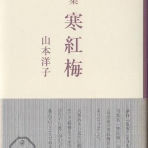 山本洋子句集『寒紅梅』角川書店