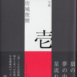 坊城俊樹・句集『壱』朔出版