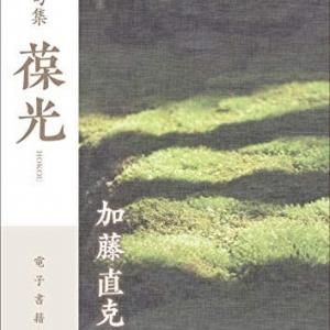 加藤直克・句集『葆光』(22世紀アート)