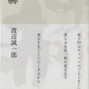 渡辺誠一郎・句集『赫赫』深夜叢書