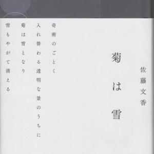 佐藤文香・句集『菊は雪』左右社