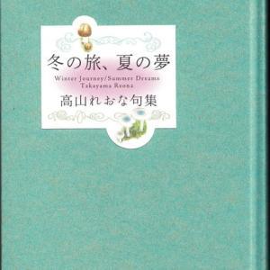 高山れおな『冬の旅、夏の旅』(朔出版)