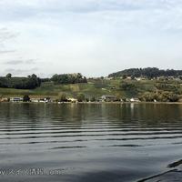 スイス西部のビール湖とムルテン湖クルーズ!秋のブドウ畑や紅葉