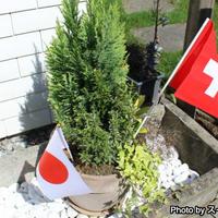 一般スイス家庭の建国記念日の過ごし方