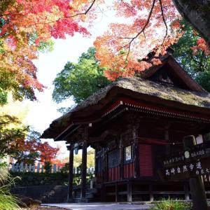 高崎 少林山達磨寺