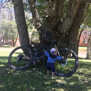 自転車が盗まれた話