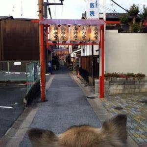 奈良の南市は「五日戎」! @nara_mise