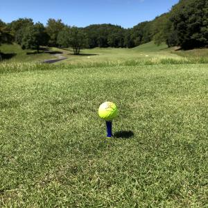 1つのボール、何ラウンドぐらい使う?