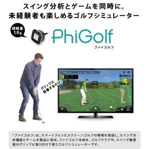 家庭用ゴルフシュミレーターなんて出てるのね~。