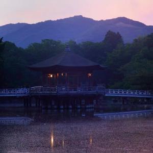 奈良の朝風景
