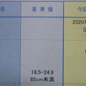 身長1.714m 体重0.0616t