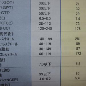 身長1.718m 体重0.0605t