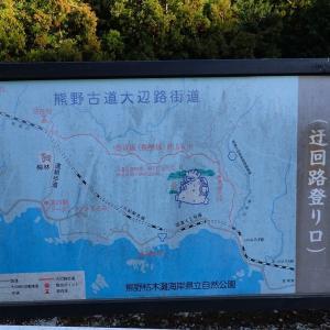 冬は古道「長井坂」