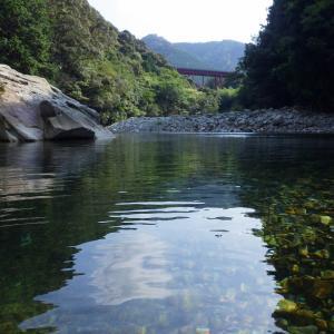 川歩き チョット涼しい写真を!