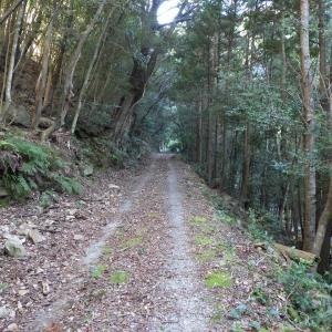 下戸川近況報告