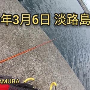 淡路島へ釣りに行ってきました