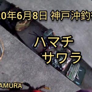 2020年6月8日 神戸沖堤防で魚釣り。ハマチ サワラ釣れてます!