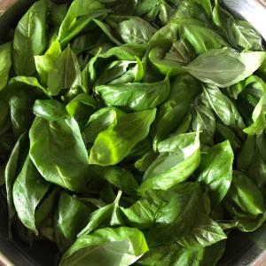休日の家飲みと家庭菜園収穫の料理