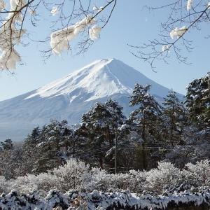 富士山  Mt.Fuji 2020/01/19