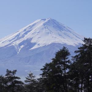 富士山  Mt.Fuji 2021/01/25
