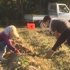 大和アグリラボ 奈良県農業体験 農業見学 奈良県農の担い手育成 家庭菜園