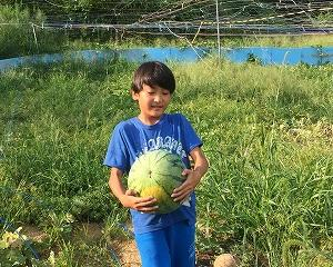 奈良県農業体験 仲間と自然界に子供を解き放つのは、現代の大人がなすべき責務だ。