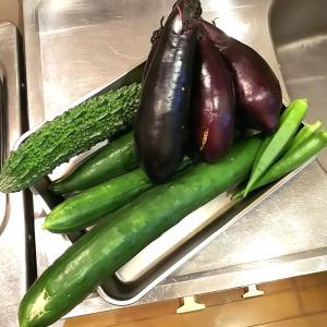 夏野菜てんこ盛り!