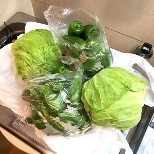 大量のピーマンと野菜の冷凍保存