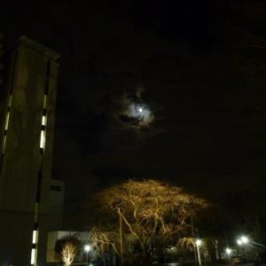 #満月と雲