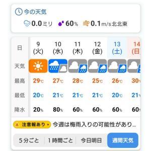 梅雨が来る前にぃ~「昭和ホルモン なか屋」