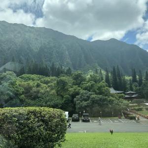 観光スポットでもあるハワイの平等院(バレー・オブ・ザ・テンプル・メモリアルパーク)