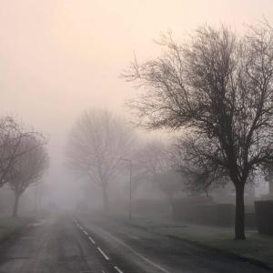 イギリスの冬の名物、朝深く立ち込める霧、霧のフィルターを通して住宅街の見なれた光景が幻想的に変貌