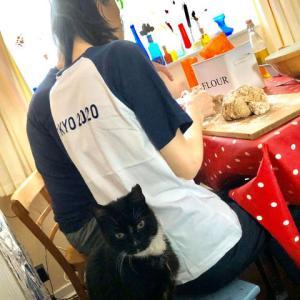 外に出られない外出禁止の日曜日、ネコと閉じ込められてパンを焼く