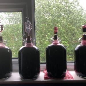 夫の自家製ワイン第2弾、家庭でできるコポコポ醸造、勝手に発酵し続けて2週間で無税のワインに!
