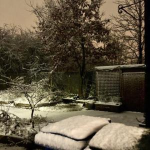 寒いと思ったら夜の雪。コロナだけじゃない!突風が吹き荒れ、冠水浸水、踏んだり蹴ったりのイギリスで深夜の雪見
