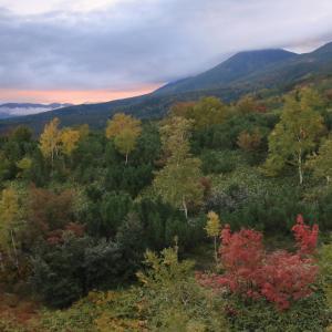 《北海道2019》⑮十勝岳と美瑛