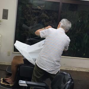 日刊リボッジオ272〜最後の修行編
