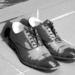 靴の中に棲みついていたもの