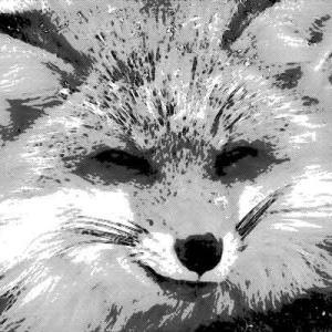 大きなお狐様との不思議な出会い