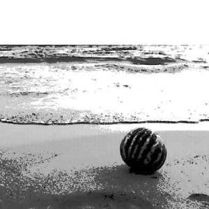 砂上を這いずっていたのは男の生首