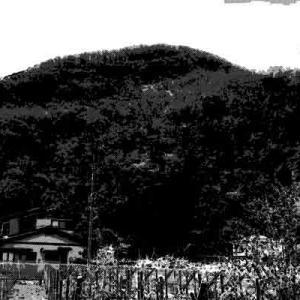 慰霊碑やお寺に神社まである小さな裏山にて