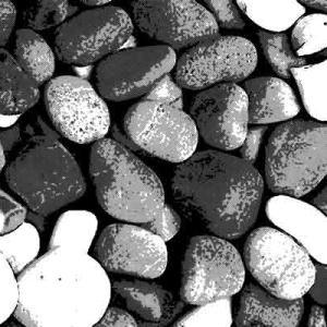 山で見つけたツルツルした丸い石が