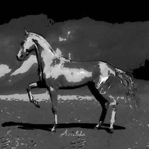 その日から馬に憑かれた状態になってしまった