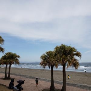 「初詣は海」